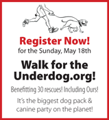 Walk for the Underdog